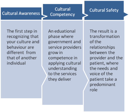 cultural safety nursing Health professions such as nursing and medicine develop a workplace environment or any other new cultural safety culture and the health workplace.